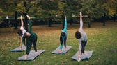 практика : Female yoga students are doing sequence of asanas in park exercising and enjoying autumn nature and physical activity. People and health concept.