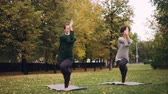 バランス : Slender girl yoga student is learning Eagle pose under guidance of teacher during individual practice with instructor in park. Beautiful autumn nature is in background.
