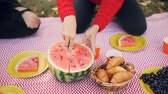 slices : Slow motion of people on a picnic, female hand is cutting watermelon while male hand is taking glass with drink. Food fruit and pastry are visible on plaid. Stock Footage