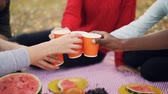 toasting : Slow motion of male and female friends holding drinks then clinking glasses and having fun sitting on blanket in park enjoying picnic together on autumn day. Stock Footage
