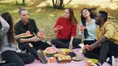 neformální : Slow motion of multi-ethnic group of men and women having picnic eating watermelon talking and laughing sitting on plaid on grass. People and nature concept.