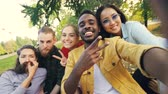 multietnikus : Multiethnic group of young people African American, Asian and Caucasian is taking selfie on picnic with drinks looking at camera and laughing having fun.