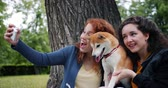 mávání : Slow motion of students joyful girls taking selfie with adorable puppy in park using smartphone camera having fun together. People, youth and animals concept.