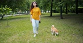 芝 : Attractive young woman walking in park with adorable shiba inu dog stepping on green grass smiling enjoying walk. People, animals and lifestyle concept.