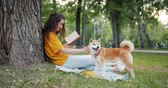 čtenář : Side view of lovely girl enjoying book in park smiling and stroking purebred dog sitting on blanket on green lawn. Summertime, hobby and youth concept.