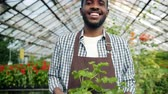 piccolo : Joyful African American florist in apron walking in greenhouse holding box of flowers smiling looking at camera, beautiful blooming plants are visible in background.
