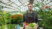 питание : Slow motion of handsome man in apron walking in greenhouse holding wooden box of organic food looking around at plants. People, work and nature concept. Стоковые видеозаписи