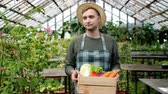 питание : Slow motion of handsome man in apron walking in hothouse with box of organic food carrying autumn harvest looking around. People, farm and job concept. Стоковые видеозаписи