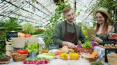husband : Slow motion of male farmer handsome guy bringing vegetables to farm market in greenhouse and talking to saleswoman. Organic food and business concept. Stock Footage