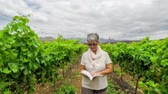 zęby : senior woman walking in a vineyard with a book Wideo