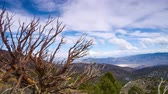Bristlecone Pines cloudscape timelapse towards Death Valley