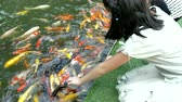 horta : Asian child feeding fishes in a garden pond. Children feed carp Koi fishes from a baby bottles with a special liquid fish food.