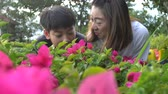 horta : Happy asian family mother and son looking at pink flower in park. Recorded hand-held in slow motion at 4K