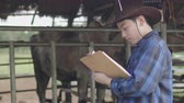 rancho : Asian boy working at farm. Teen in blue shirt working in cow farm. Stock Footage
