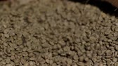 green coffee beans : green coffee roasting falls