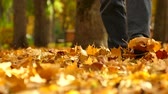 usa : Man walk in autumn Central park with yellow trees. Foots move to camera.