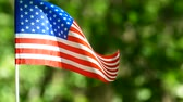 American Flag in slow motion, slider approach. Forest green background