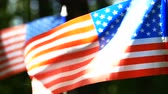 Two American Flagsinslowmotioncloseupsunnywood. Heel geschoten Stockvideo