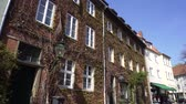 vine plant : House overgrown with plants on street of Hannover city, Germany, Europe, April 17 2018. Ivy climbing vertical up on exterior facade wall and windows, decoration make harm to building Stock Footage
