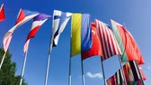multinacional : Colorful flags from different countries Archivo de Video