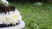 wedding : chocolate cake decorated with white fresh flower stand on green grass panorama right