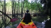 caiaque : old man in life-vest back-side view paddles on kayak out to light mangrove forest