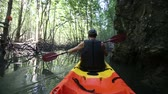 caiaque : old man in life-vest back-side view paddles on kayak down river in canyon among cliffs and mangrove jungle Vídeos