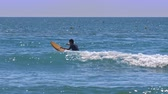 tentar : man surfer beginner sits on board and paddles between waves in boundless azure ocean glowing under sunshine