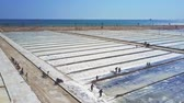 шахта : aerial view people work on huge salt plantations under scorching sun against impressive azure ocean