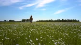 grano saraceno : wind shakes girl long hair running on buckwheat field