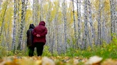 tyumen : senior women in jackets walk among gold birches back view