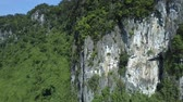 wietnam : close aerial grey and white stony cliff with plants on top