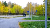 tyumen : guys ride bikes along asphalt tracks in yellow birch park
