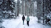 tyumen : friends spend leisure time walking along winter park Stock Footage