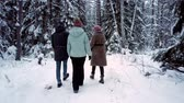 tyumen : friends communicate walking along forest with trees