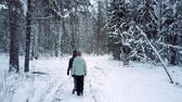 tyumen : people walk along beaten path in park in snowy winter