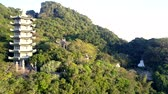 aerial view pagoda among wild tropical jungle on mountain