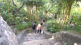 people tourists go down ancient stone stairs on hill slope