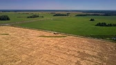 amazing panoramic view combine harvester stands on large ripe crop fields near highway under blue sky