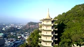 tranquil aerial motion to beautiful pagoda among deep rainforest against modern city and blue sky