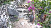 side view girl with long plait in denim shorts goes down old stone steps leading to temple yard among tropical plants
