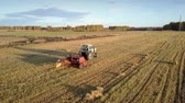 coletor : close tractor drives and rectangular baler pushes up collected straw bale on harvested field at sunset