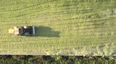 сектор : beautiful upper view powerful silator drives tamps huge silo pit with fodder for farm animals on sunny September day