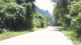 дорожный знак : picturesque jungle road with green trees shadows and signs under clear summer sky in Vietnam Стоковые видеозаписи