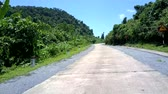 silvicultura : wonderful winding jungle road with black and white poles and gray barriers under blue sky in summer