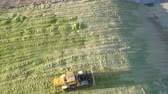 fodder : upper view modern powerful forage tractor rams feed silage in large pit on sunny autumn day