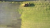 сектор : vertical panorama powerful silage ramming bulldozer leaves silage heap and drives on concrete bottom in pit on sunny day