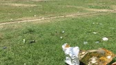 charneca : Big piece of tin foil and trash scattered around public park after festival in Berlin
