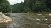 Beautiful view of mountain river in summer day, Black Cheremosh, Ukraine. Fast flowing water and rocks