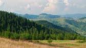 Timelapse of bright summer day in Carpathian mountains, panorama of Carpathians, blue sky, trees and green hills, beautiful view Stock mozgókép
